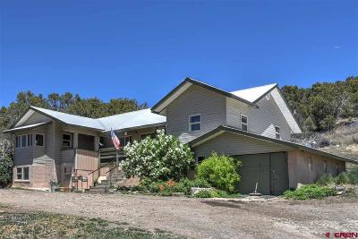 Mancos Single Family Home For Sale: 41809 Hwy 184