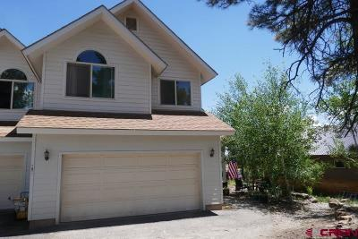 Pagosa Springs Condo/Townhouse For Sale: 292 E Golf Place #B