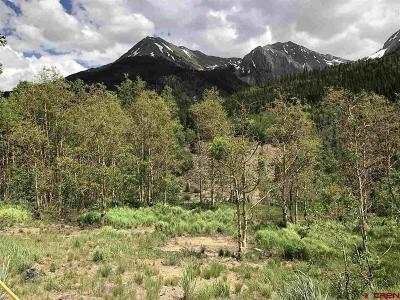 Silverton Residential Lots & Land For Sale: 1 Cr 21