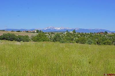 Dolores Residential Lots & Land For Sale: 27076 Road T.8