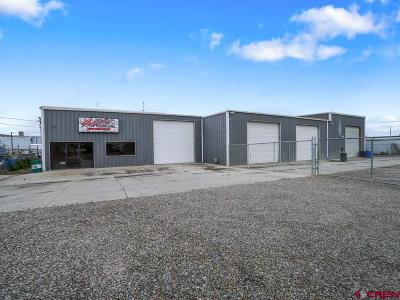 Commercial For Sale: 587 25 Road