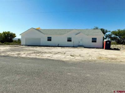 Delta County Single Family Home For Sale: 739 1325 Road