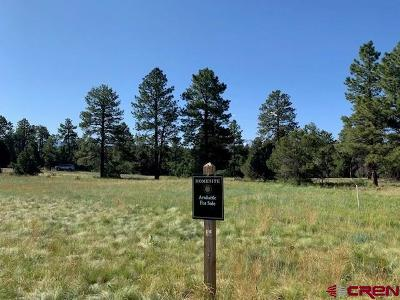 Ridgway Residential Lots & Land For Sale: 123 Hummingbird Trail