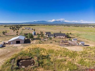 Hesperus CO Single Family Home For Sale: $1,199,000
