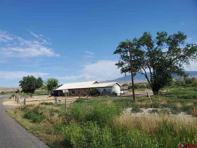 Delta County Single Family Home For Sale: 1151 G50 Road