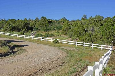 Dolores Residential Lots & Land For Sale: 16676 Road 28.4