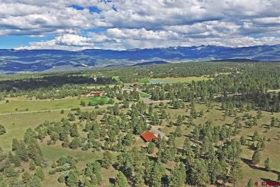 Ridgway Residential Lots & Land For Sale: 11289 County Road 1