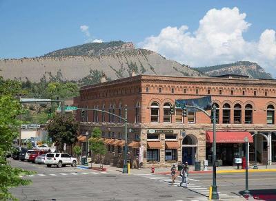 Durango Commercial For Sale: 901 Main Avenue