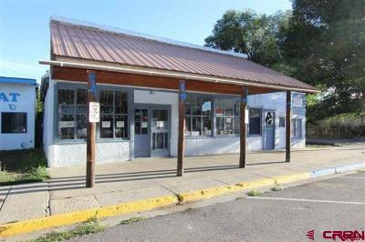 Bayfield Commercial For Sale: 24 E Mill Street