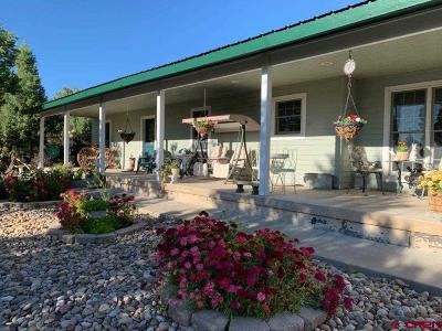 Mancos Single Family Home For Sale: 11280 Road 38.5