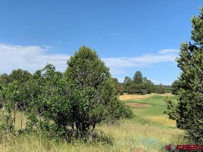 Ridgway Residential Lots & Land For Sale: 395 N Badger Trail