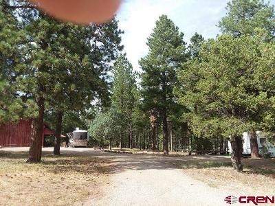 Mancos Residential Lots & Land For Sale: 35509 Highway 184