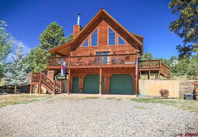 Pagosa Springs Single Family Home For Sale: 869 E McCabe Street