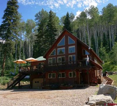 Durango Single Family Home For Sale: 310 Aspen Drive