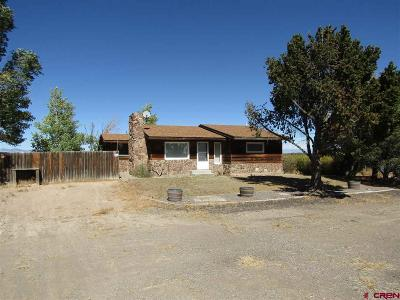 Monte Vista Single Family Home NEW: 4113 W Highway 160