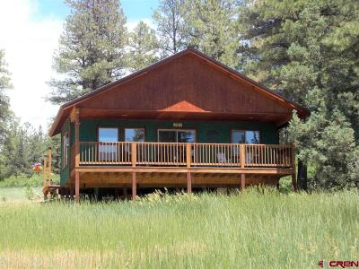 Pagosa Springs Single Family Home For Sale: 247 Spruce Circle