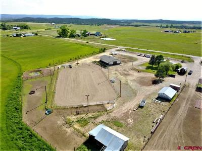 Bayfield Residential Lots & Land NEW: 4382 Cr 516