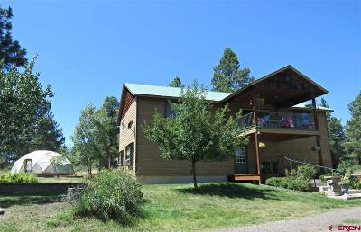 Pagosa Springs Single Family Home For Sale: 870 Great West Avenue