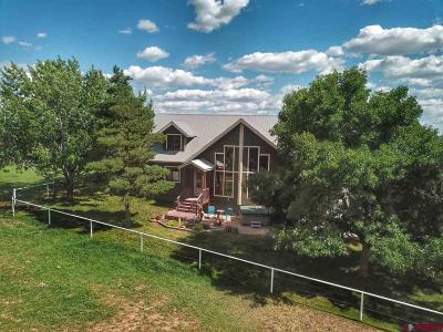 La Plata County Single Family Home For Sale: 170 Meadowlark Ct