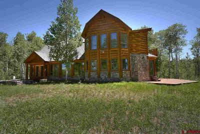Gunnison County Single Family Home NEW: 569 Meadows Road