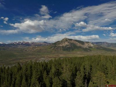 Crested Butte Residential Lots & Land NEW: 275 Saddle Ridge Road