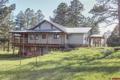 Mancos Single Family Home For Sale: 15100 Road 35.3