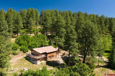 Durango Single Family Home For Sale: 9 Los Ranchitos Drive