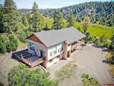 Pagosa Springs Single Family Home NEW: 1601 Harvard