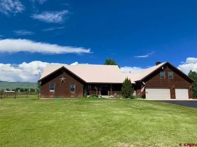 Gunnison Single Family Home NEW: 320 Meadow Lark Trail