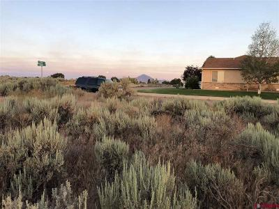 Cortez Residential Lots & Land For Sale: 470 Kansas Street