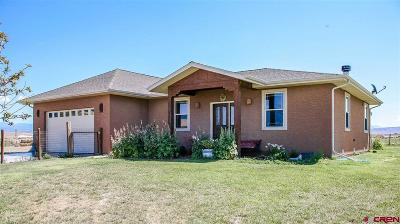 Delta Single Family Home For Sale: 4692 1900 Road