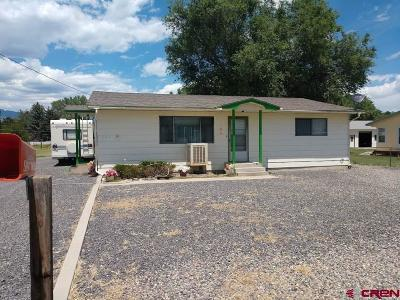 Delta County Single Family Home NEW: 1580 H25 Road