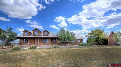 Single Family Home NEW: 20700 Road 23