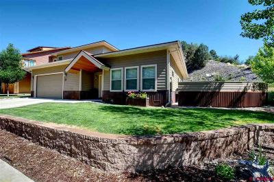 La Plata County Single Family Home For Sale: 35 Ella Vita Court
