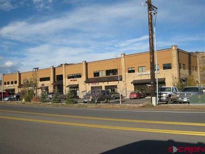 Durango Commercial NEW: 450 S Camino Del Rio #202