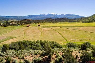 Mancos CO Residential Lots & Land NEW: $925,000
