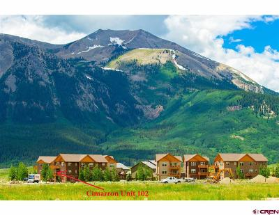 Crested Butte Condo/Townhouse For Sale: 212 S Avion Drive #102
