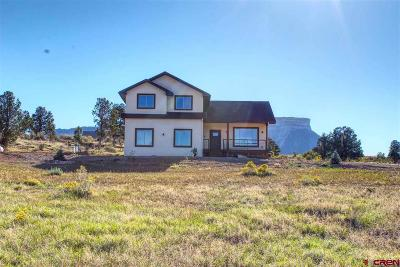 Mancos Single Family Home For Sale: 36493 Road G.9