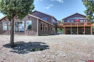 Mancos Single Family Home For Sale: 10400 Road 35