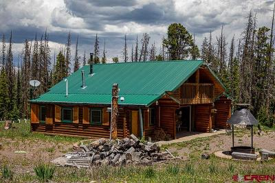 Saguache CO Single Family Home NEW: $874,000