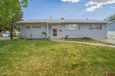 Montrose Single Family Home For Sale: 310 Pine View Drive