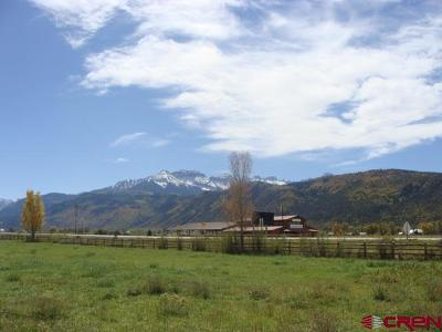 Ridgway Residential Lots & Land NEW: 9 Palomino Trail