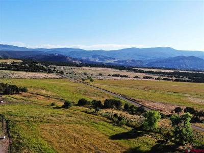 Cedaredge CO Residential Lots & Land NEW: $1,000,000