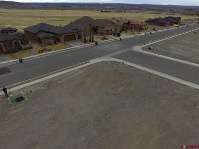 Montrose Residential Lots & Land For Sale: 1101 San Sophia Drive