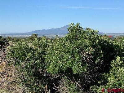 Dolores Residential Lots & Land For Sale: 4 Road U.7