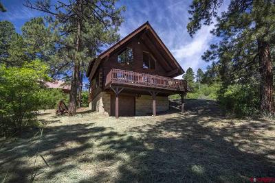 Pagosa Springs Single Family Home NEW: 181 Swiss Village Drive