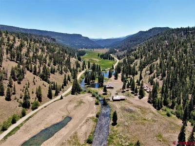 Powderhorn CO Single Family Home NEW: $2,500,000