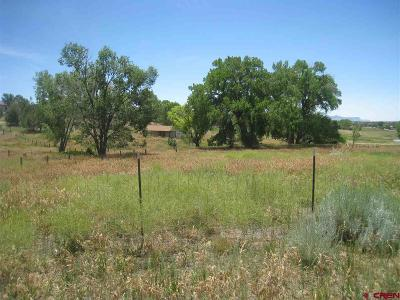 Dolores Residential Lots & Land For Sale: 24112 Road S.6
