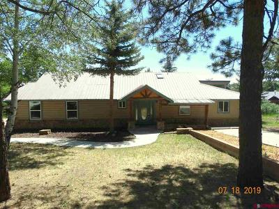 Pagosa Springs Single Family Home For Sale: 955 Hill Circle