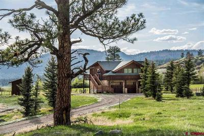 Pagosa Springs Single Family Home For Sale: 2500 County Road 382